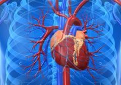 what is chelation therapy